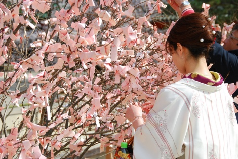 Omikuji fortune telling papers