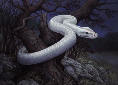 white_snake_by_atenebris