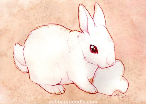 white_bunny_rabbit_by_dabbersdoodle-d414gfu